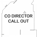 Co-Director Call Out 2021